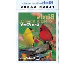 Impact Photographics IMP2FLC Flash Cards Birds North America