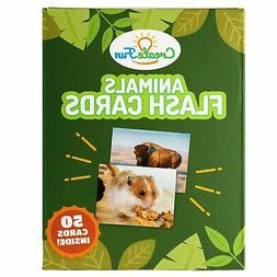 Animal Flash Cards   50 Photo Cards for Toddlers, Pre-K, Kin