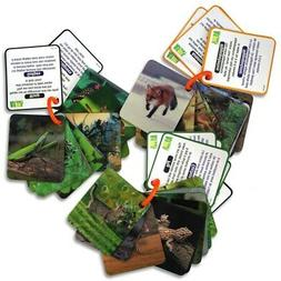 Animal Planet 3D Creatures Flash Cards Set