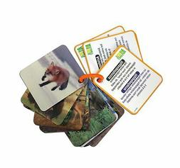Animal Planet Wild Animals 3D Flash Cards