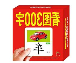Chinese characters cards:learn 300 Chinese characters with t