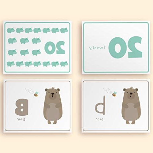 Animal Flash Cards Babies, Toddlers, and Kindergarten Children Alphabet in and With Numbers Learning Thick Flashcards