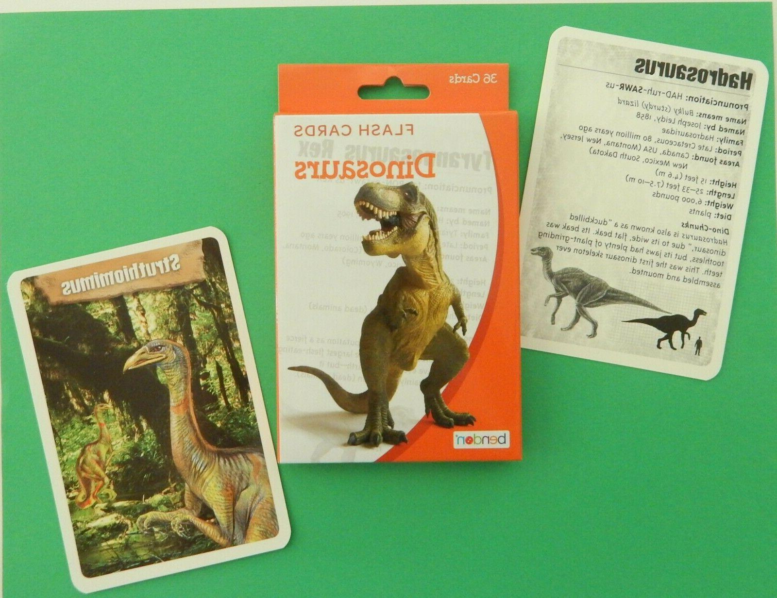 Dinosaur Cards Learning Pronunciation Stats Science Facts Places FUN