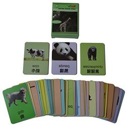 YouPac Kids Local Explorer Flash Cards bilingual - Animals