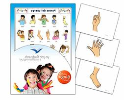 Body Parts Flashcards in Spanish Language - Flash Cards with