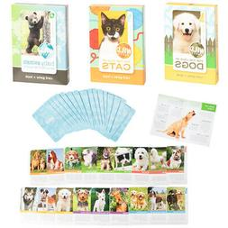 wild animal flash card game book